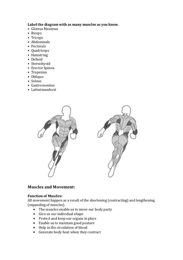 unit 5 anatomy and physiology Anatomy and physiology is a dynamic textbook for the two-semester human anatomy and physiology course for life science and  unit 2: support and movement 5.