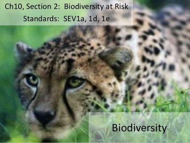 Ch10, Section 2: Biodiversity at Risk Standards: SEV1a, 1d, 1e  Biodiversity