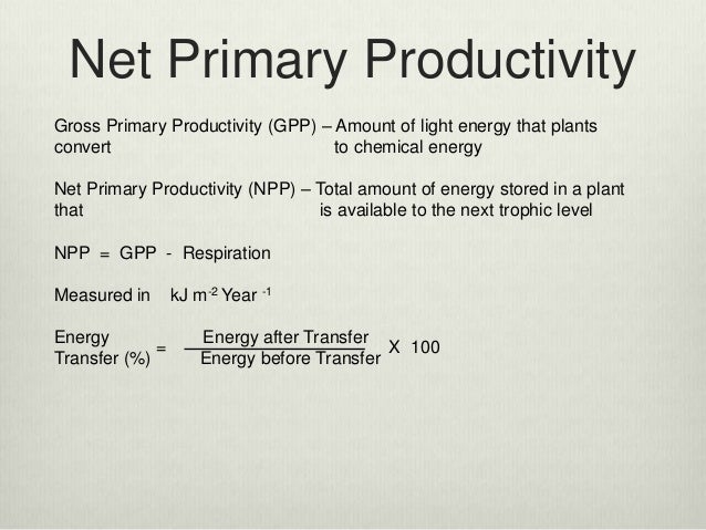 calculating primary production Primary production is the chemical energy generated by autotrophs during photosynthesis and chemosynthesis primary productivity is the rate of primary production.