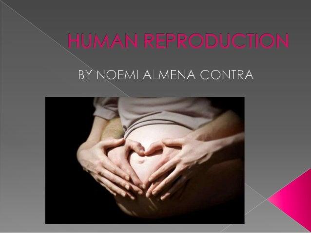 Unit 4 human reproduction noemi s