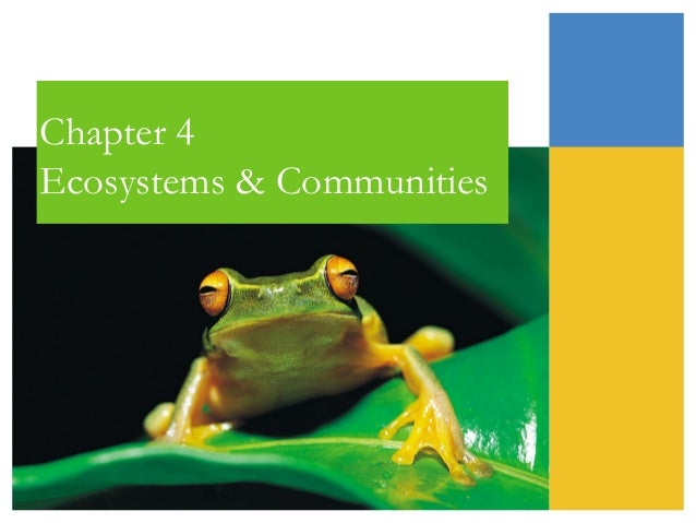 Chapter 4 Ecosystems & Communities