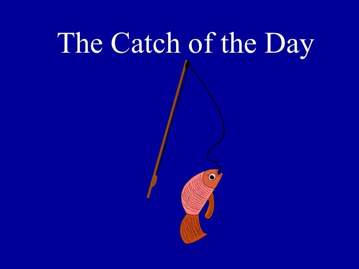 The Catch of the Day