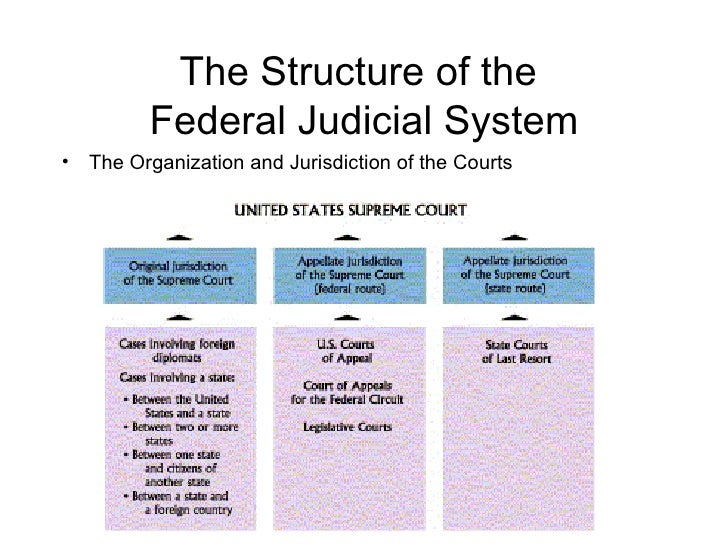 judicial branch the governments ear essay
