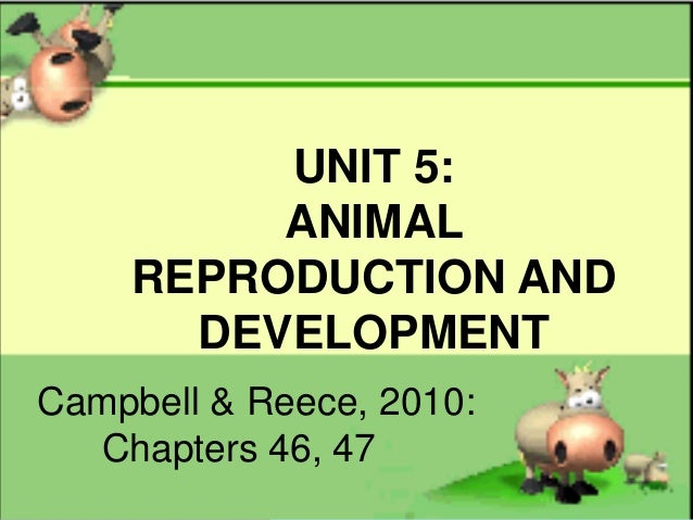 Unit 5 animal reproduction and development