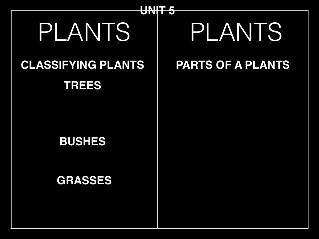 Unit 5 plants