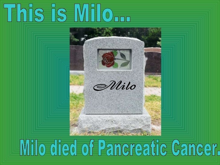 This is Milo... Milo died of Pancreatic Cancer.  Milo