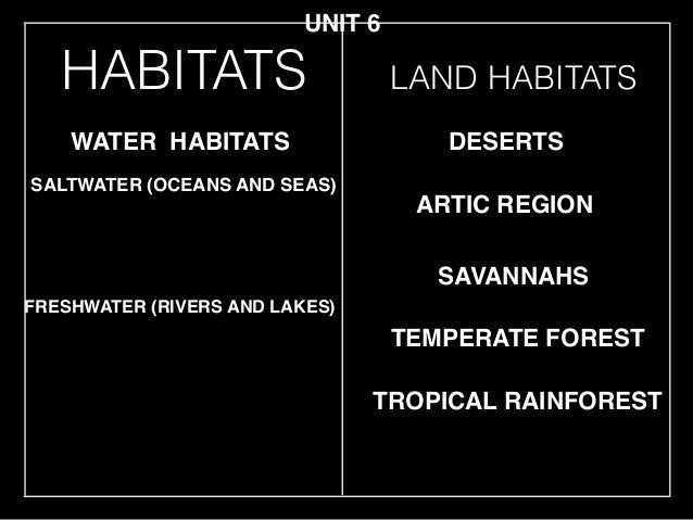 HABITATS SALTWATER (OCEANS AND SEAS) WATER HABITATS DESERTS UNIT 6 LAND HABITATS FRESHWATER (RIVERS AND LAKES) ARTIC REGIO...