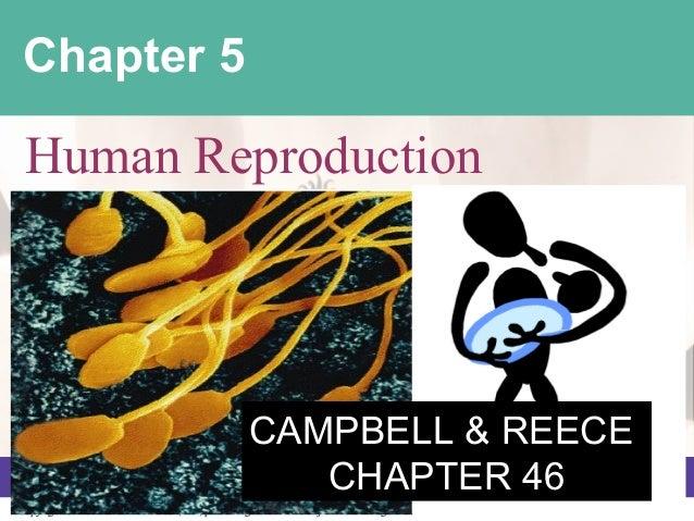 Unit 6  human reproduction