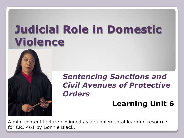 Learning Unit 6 -Judicial Role in D. V. CRJ 461
