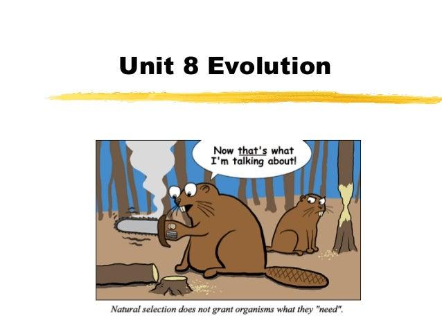 Unit 8 Evolution