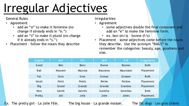 Image Gallery irregular adjectives in french