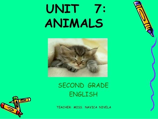 ANIMALS - UNIT  7