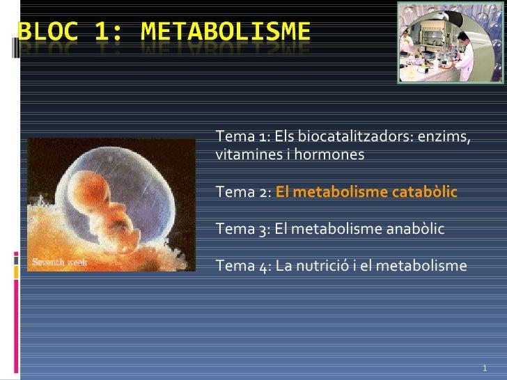 Tema 1: Els biocatalitzadors: enzims, vitamines i hormones Tema 2:  El metabolisme catabòlic Tema 3: El metabolisme anabòl...