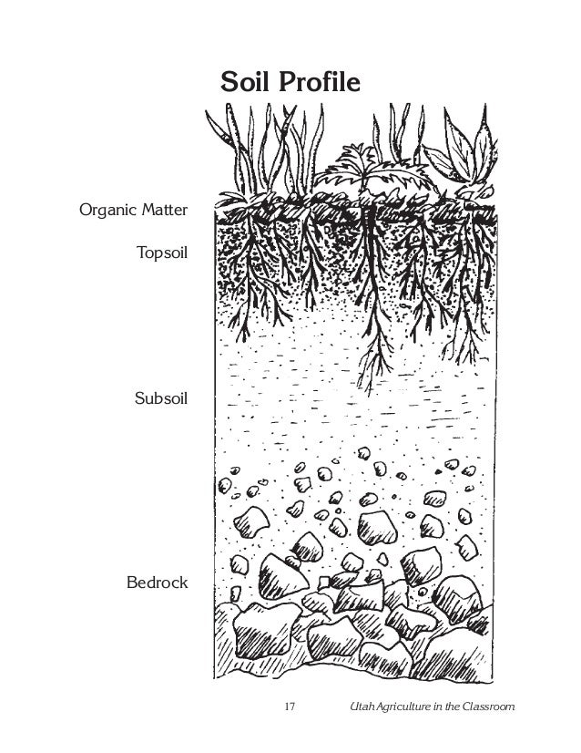 Bedrock soil profile images for Soil profile video