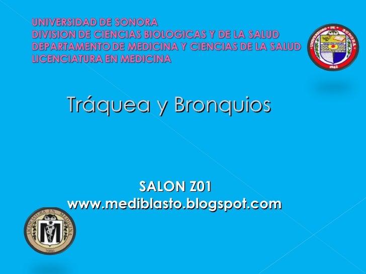 <ul><li>Tráquea y Bronquios </li></ul><ul><li>SALON Z01 </li></ul><ul><li>www.mediblasto.blogspot.com </li></ul>