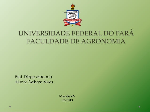 UNIVERSIDADE FEDERAL DO PARÁ   FACULDADE DE AGRONOMIAProf. Diego MacedoAluno: Geilsom Alves                       Marabá-P...