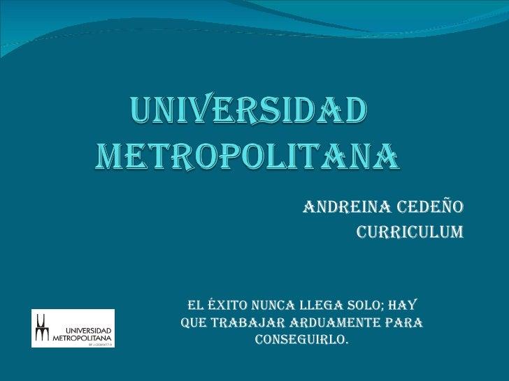 Andreina Cedeño curriculum El éxito nunca llega solo; hay que trabajar arduamente para conseguirlo.