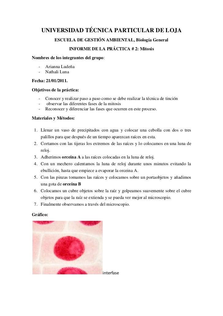 UNIVERSIDAD TÉCNICA PARTICULAR DE LOJA<br />ESCUELA DE GESTIÓN AMBIENTAL, Biología General<br />INFORME DE LA PRÁCTICA # 2...