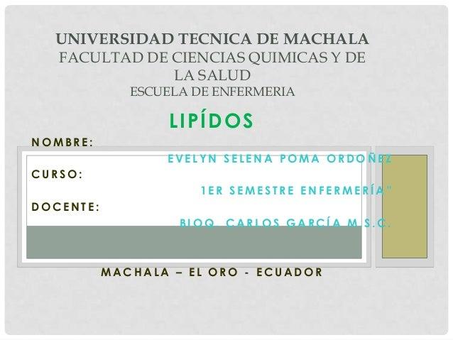 UNIVERSIDAD TECNICA DE MACHALA FACULTAD DE CIENCIAS QUIMICAS Y DE LA SALUD ESCUELA DE ENFERMERIA  LIPÍDOS NOMBRE: EVELYN S...