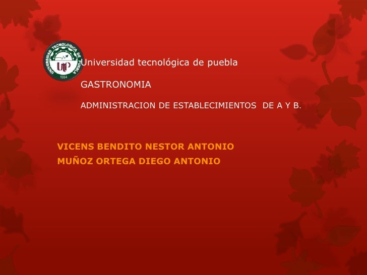 Universidad tecnológica de puebla   GASTRONOMIA   ADMINISTRACION DE ESTABLECIMIENTOS DE A Y B.VICENS BENDITO NESTOR ANTONI...
