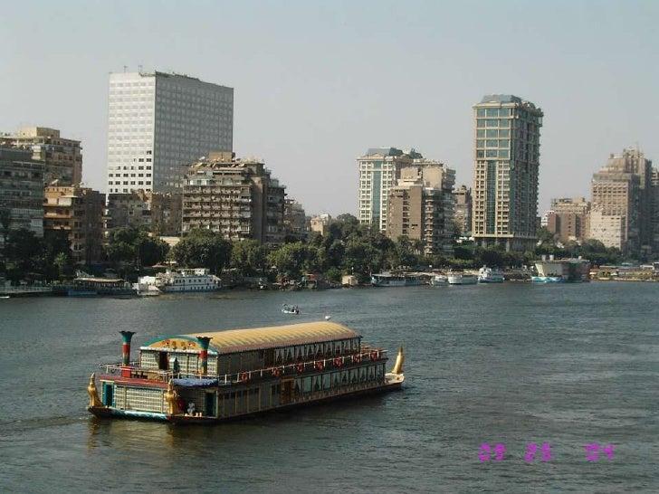 Université Du Caire