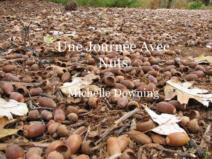 Un Jour Avec Nuts By: Michelle Downing Une Journée Avec Nuts Michelle Downing