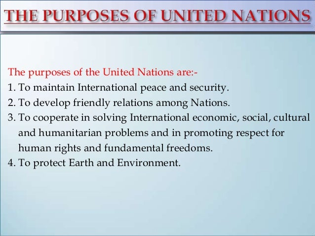 United nations stimulation essay