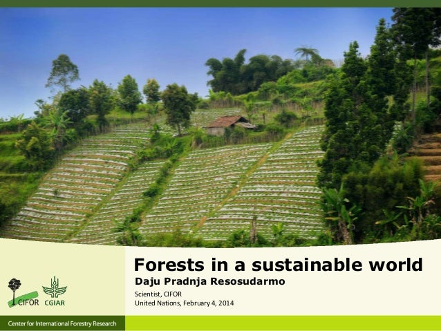 Forests in a Sustainable World
