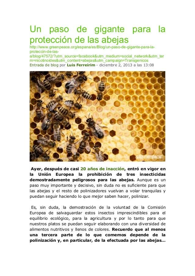 Un paso de gigante para la protección de las abejas http://www.greenpeace.org/espana/es/Blog/un-paso-de-gigante-para-lapro...