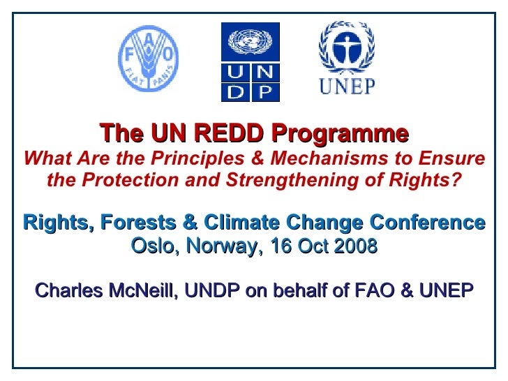 The UN REDD Programme What Are the Principles & Mechanisms to Ensure the Protection and Strengthening of Rights? Rights, F...