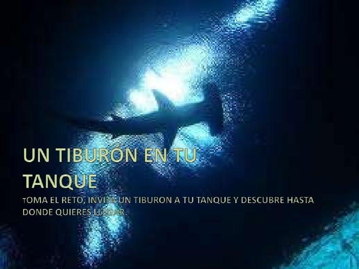 Un tiburn en tu tanque - Diario La Tribuna Honduras