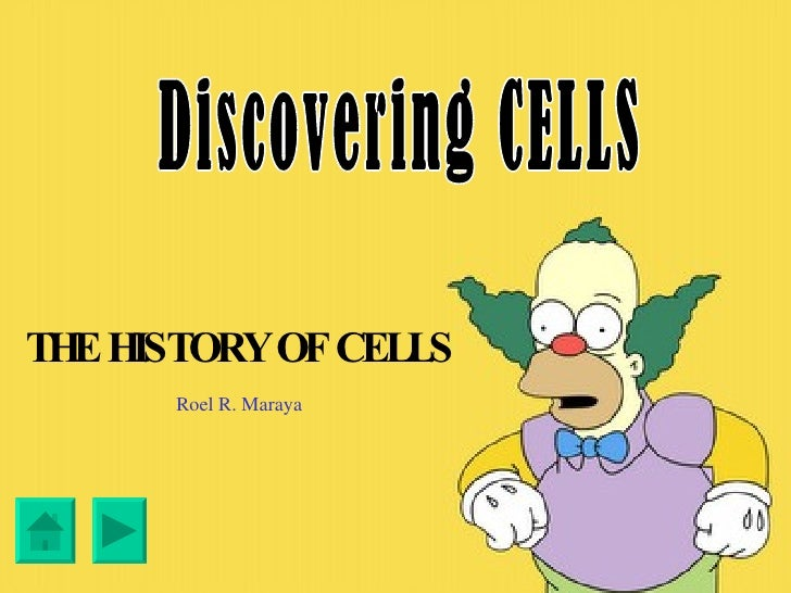 Discovering the Cells