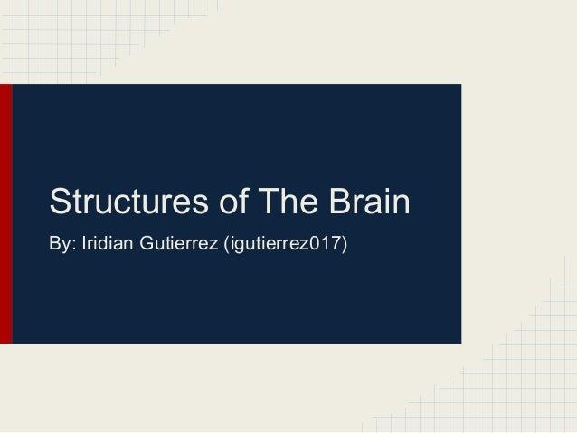 Structures of The Brain By: Iridian Gutierrez (igutierrez017)