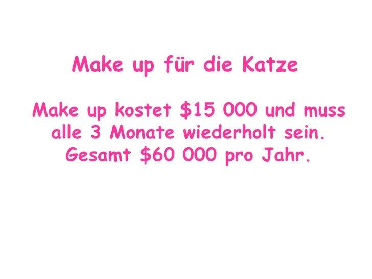Make up für die Katze   Make up kostet $15 000 und muss alle 3 Monate wiederholt sein. Gesamt $60 000 pro Jahr.