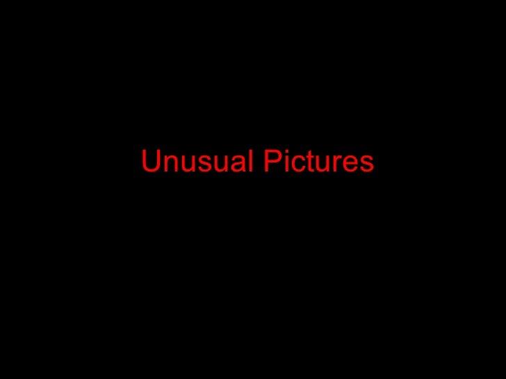 Unusual Pictures