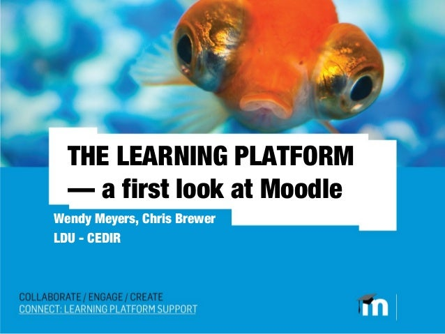 THE LEARNING PLATFORM  — a first look at MoodleWendy Meyers, Chris BrewerLDU - CEDIR