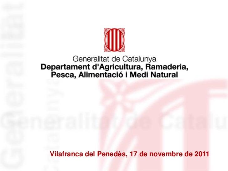 Vilafranca del Penedès, 17 de novembre de 2011