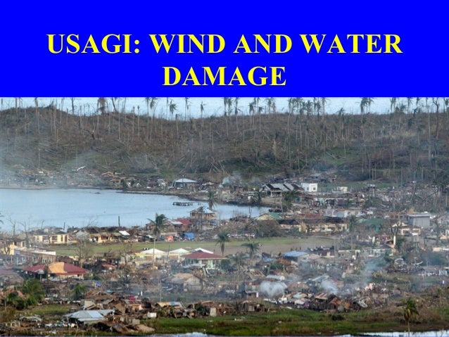 USAGI: WIND AND WATER DAMAGE