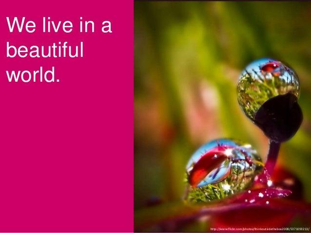 We live in abeautifulworld.http://www.flickr.com/photos/thinkoutsidethebox2008/5371059213/