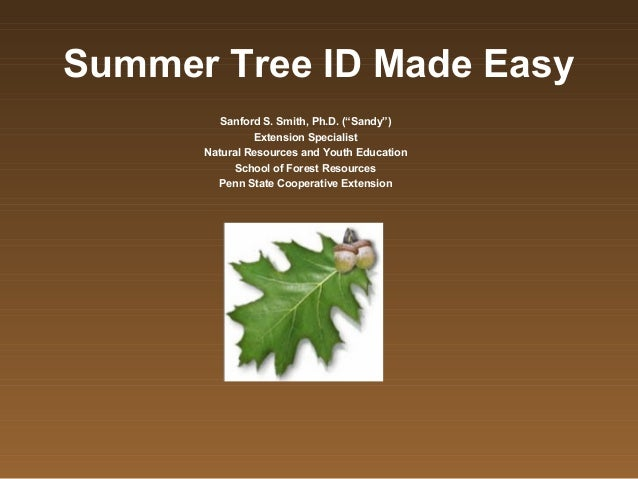 """Summer Tree ID Made Easy         Sanford S. Smith, Ph.D. (""""Sandy"""")               Extension Specialist      Natural Resourc..."""