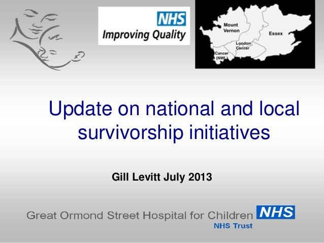 Update on national and local survivorship initiatives Gill Levitt July 2013