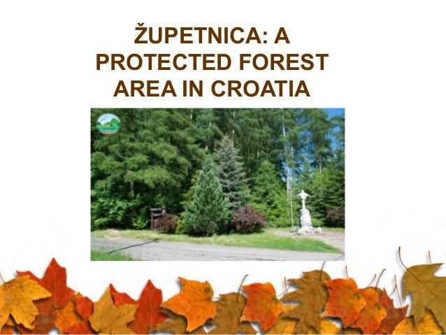ŽUPETNICA: A PROTECTED FOREST AREA IN CROATIA  .