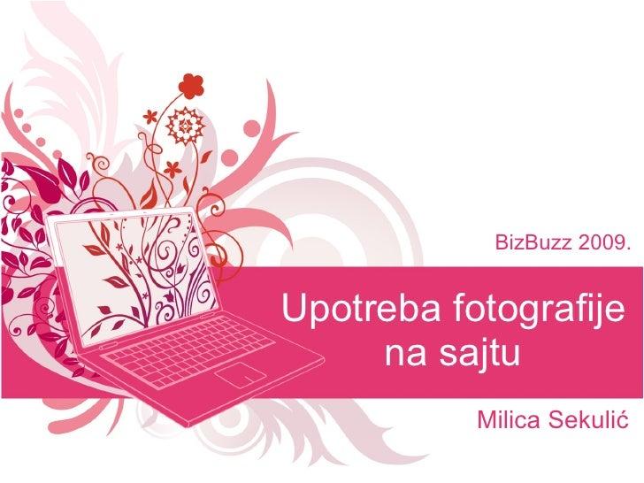 Milica Sekulić - Upotreba fotografije na sajtu