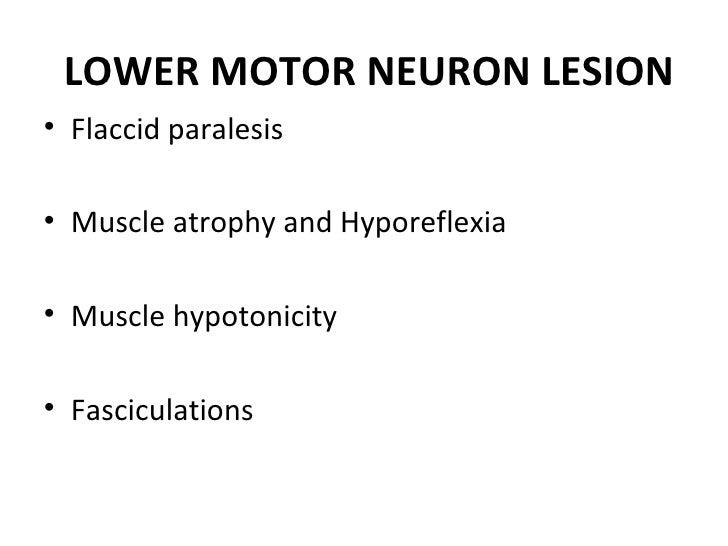 Upper and lower motor neuron lesions by dr ifra for Lower motor neuron diseases