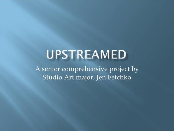 A senior comprehensive project by Studio Art major, Jen Fetchko