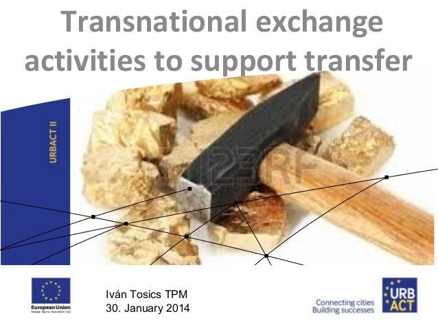 Transfer Pilots Plenary - Transnational Exchanges (30.01)