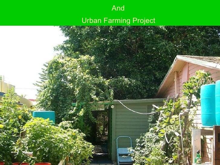 Urban  Farming &  Rain Water Irrigation Project