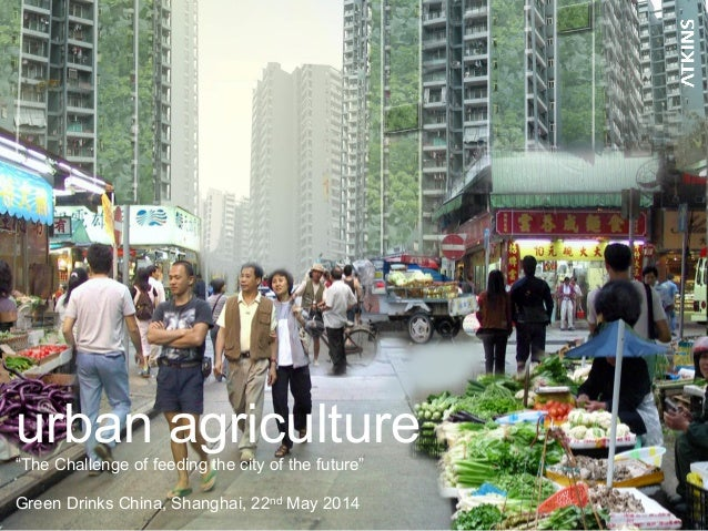 """urban agriculture """"The Challenge of feeding the city of the future"""" Green Drinks China, Shanghai, 22nd May 2014"""