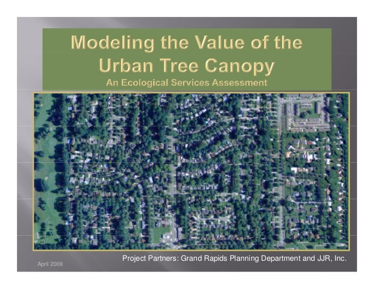 Urban Forests Ecological Services