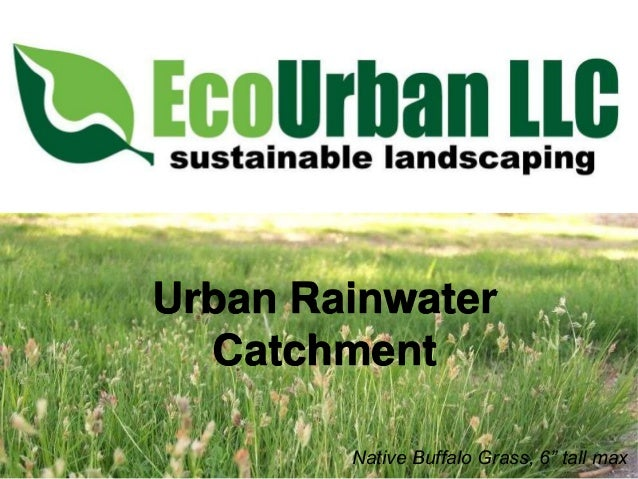 Urban rainwater catchment for master gardeners 3.7.13
